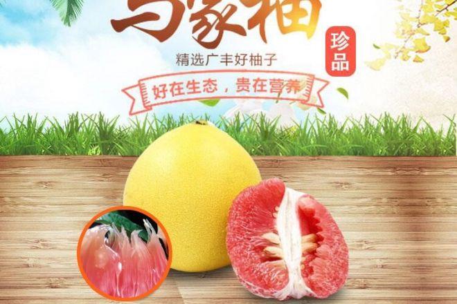 """皮厚、籽大、价高的""""广丰马家柚""""被奉为仙果"""