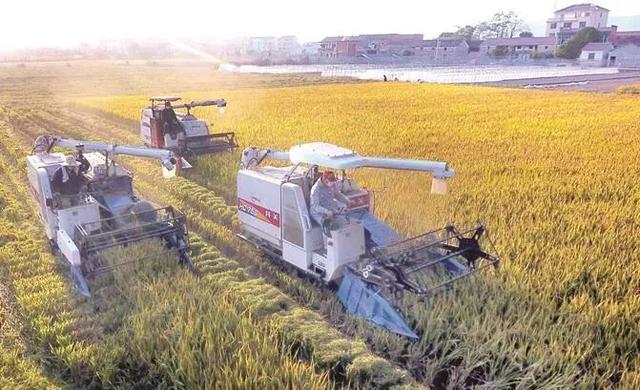 中国式家庭农场怎么办?怎样获得土地?