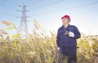 蓝领创客张黎明: 新时代电力工人要勇于创新